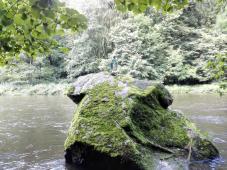 Madonnenfigur auf einem Findling im Fluss