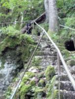 Wo Treppen sind, rennt Doxi gern voraus