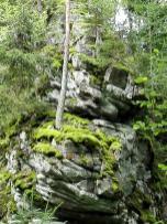 Bäume haben es schwer, sich auf dem Granit einzunisten