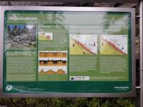 Infotafel zur Entstehung des Saubaldfelsens