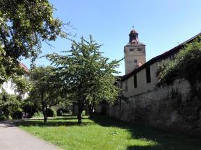 Apfelbäume an der Stadtmauer