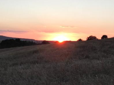 Sonnenuntergang über den Feldern