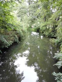 Die Landschaft spiegelt sich im Wasser
