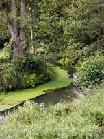 Malerisch schlängeln sich die Fließe durch die Landschaft