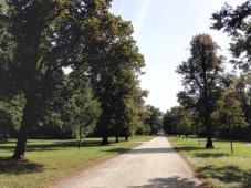 Breite Wege mit langen Sichtachsen prägen den Park