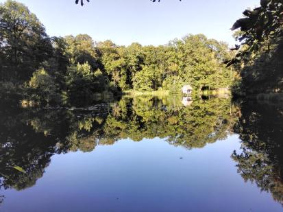 Großer Teich im Schlosspark