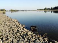 Doxi testet die Wasserqualität der Elbe
