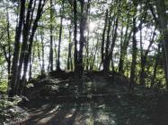 Einer von rund sechshundert Grabhügeln im Sachsenwald aus uralter Zeit