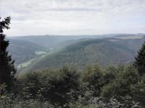 Blick vom Sulzbusch