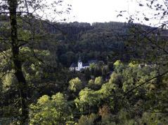 Blick vom Traumpfad hinunter zur Abtei Sayn