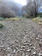 Das trockengefallene Flussbett
