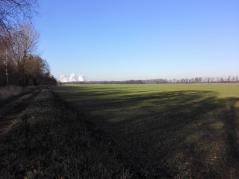 Blick über die Hochfläche Richtung Bergheim