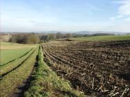Landwirtschaft auf den Moselhöhen