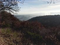 Aussicht von der Luisenplatzhütte Richtung Mayen
