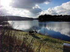 Blick auf den Herbringhauser Stausee, der der Trinkwassergewinnung dient