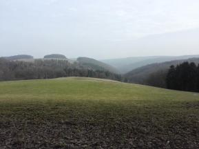 Hinauf zur Abtei Mariawald