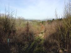 Der Streuobstwiesenweg bei Mühlheim-Kärlich
