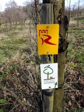 Teilweise läuft der Weg parallel zum Rheinsteig