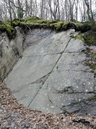 Der Westerwald ist der rechtsrheinische Teil des Rheinischen Schiefergebirges - man sieht es