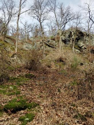Eine Etappe des Westerwaldsteigs kann wirklich nur mit Kletterausrüstung begangen werden