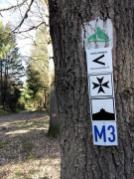 Zahlreiche gut markierte Wanderwege führen durch das Gebiet