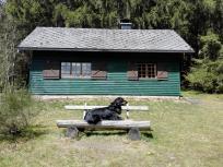 Doxi vor einer Hütte der Waldarbeiter