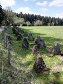 Die Drachenzähne des ehemaligen Westwalls prägen noch heute das Landschaftsbild