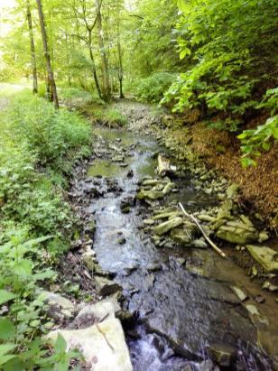 Wir folgen dem Zimmerbach hinunter ins Tal der Kupfer