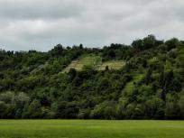 Die südlichen Hänge im Jagsttal werden zum Teil für den Weinanbau genutzt