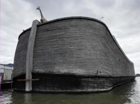 Auf halber Strecke zwischen Rotterdam und Alblasserdam liegt eine Arche Noah am Ufer