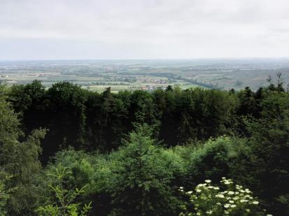 Vom Ohrntal in den Mainhardter Wald