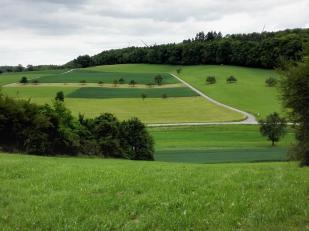 Blick auf die Höhen nördlich von Widdern