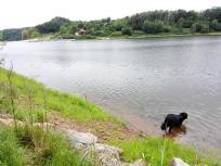 Doxi teste die Wasserqualität des Sees