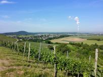 Die Wolkenfahne am Horizont stammt aus dem Kraftwerk Heilbronn