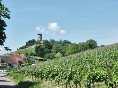 Wir nähern uns der Burg Hohenbeilstein