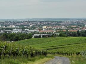 Von Heilbronn zur Burg Stettenfels
