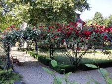 Der Garten hinter dem Schützenhaus
