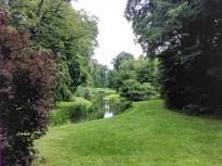 Organische Strukturen prägen den Englischen Garten