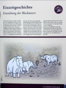 Infotafel zur Entstehung des Geröllfeldes