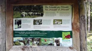 Infotafel zur Nutzung des Waldes für das Nutzvieh