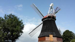 Windmühle am Wynhamster Kolk