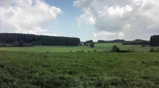 Wiesen und Wälder wechseln sich auf der Wanderung ab