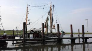Fischerboot im Hafen von Varel