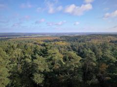 Blick über die Hard in Richtung Münsterland