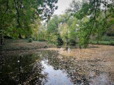 Wassergraben von Schloss Rheydt