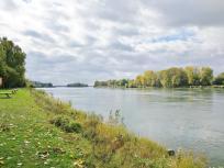 Blick vom deutschen Rheinufer hinüber nach Frankreich