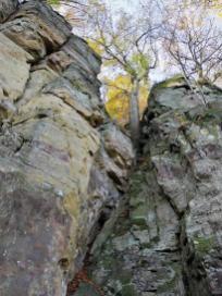 Aus den Felsspalten wachsen an einigen Stellen Buchen