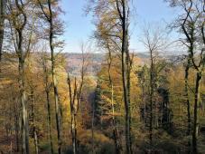 Blick hinunter Richtung Prümtal