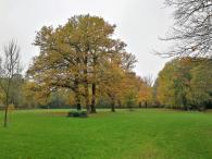 Park von Schloss Loersfeld