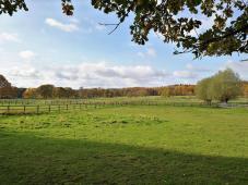 Zahlreiche Pferdehöfe sind zwischen Wambachtal und Rottbachtal angesiedelt